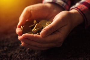 Istraživanje: Finansiranje poljoprivrede neuređeno i neracionalno
