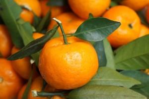Privremeno zabranjena prodaja turskih mandarina