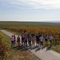 14 europskih blogera, novinara i fotografa otkriva ljepote Slavonije, Baranje i Zagorja