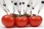 Prijavite svaku sumnju na GMO sjeme!