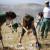 U  Zvjezdanom selu na Mosoru 350 volontera zasadilo 3.000 novih sadnica