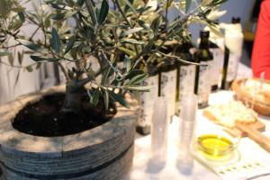 Povenjak potvrdio: Mialići poslužuju najbolje maslinovo ulje