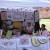 Bačka Palanka: Etno šor okupioviše od 50 izlagača