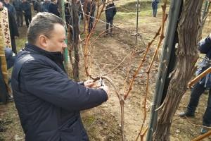 Dragoslav Ivanišević: Loza u dobroj kondiciji pred novu sezonu