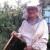 U devetom desetljeću, zdrav i vitalan brine o velikom pčelinjaku