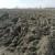 Zemlju žele i veliki i mali: Na natječaj za 2.300 hektara dobili 3.500 ponuda