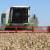"Suša u EU  ""gura"" cenu pšenice"