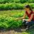Studentkinja koja ima svoju baštu, sakuplja lekovito bilje i gljive - pravi i sapune