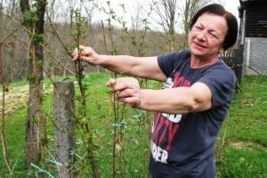 Profesorica i direktorica Rajna Soldat - uzgaja organsko voće i povrće