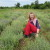 Švajcarkinja stažira na permakulturnoj farmi blizu Mostara - u BiH vidi veliki potencijal