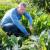 Uredba o eko proizvodnji prolongirana za još jednu godinu