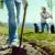 """Inicijativa """"jedan hektar"""": Poljoprivrednici će se nagrađivati za pošumljavanje?"""
