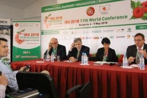 BiH malinari aplicirali za članstvo u Međnarodnoj organizaciji za malinu