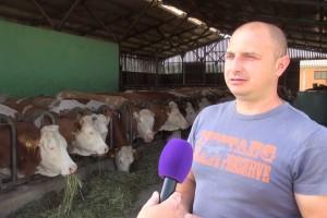 Ivan Bobek s 50 muznih krava ima najuzorniji OPG Požeško-slavonske županije