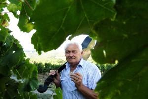 Vinski Baltazar, Ivan Enjingi, u prodaju je pustio remek djelo hrvatskog vinarstva - Venje iz 2006.!