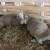 Ostali bez posla, vratili se na selo i osnovali farmu ovaca