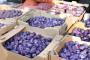Šljive i maline izvozimo u Njemačku, jabuke u Rusiju