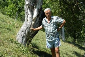 Jabuka stara 139 godina rađa u voćnjaku Antićevih