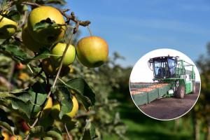 Stroj KT20 za transport sanduka voća štedi do 75% vremena od klasičnog transporta