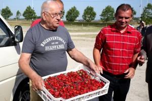 Jeftine uvozne jagode natjerale domaće uzgajivače u prosvjed: Čemu toliki uvoz kad proizvodimo dovoljno?