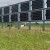 Solarne ograde za pašnjake postaju trend u poljoprivredi - višestruko su korisne