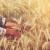 Kina postala vodeći kupac na svjetskom tržištu ječma