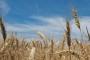 Jakovina u Saboru predstavio zakon o poljoprivrednom zemljištu