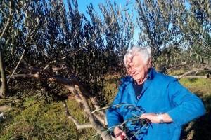 Jovanin Plenković (87) orezuje lozu i masline, krči zemljište i podiže vinograd