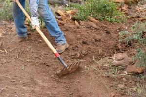 HUP Vladi: Radnike koji primaju novčanu pomoć angažirajte u poljoprivredi