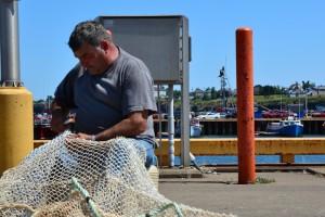 Stiže pomoć hrvatskim ribarima, prerađivačima i školjkarima