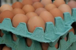 TISUP: Na domaćem tržištu cijene jaja na istoj razini kao i prošli mjesec
