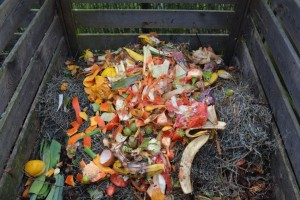 Zabranili bacanje hrane u komunalni otpad