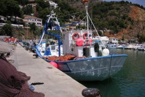 Ribari, otvoren je natječaj iz Mjere I.22. vrijedan 2,4 milijuna eura