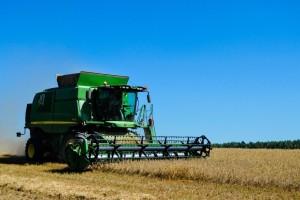 Podbacila žetva pšenice, u Francuskoj pad prinosa od 25%?