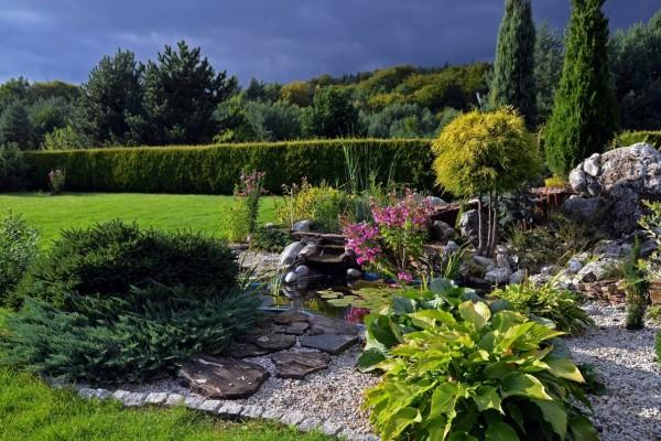 Želite oblikovati kamenjar? Ove biljne vrste su idealne!