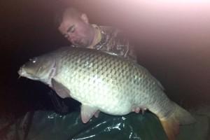 Kemal Avdić ulovio šarana teškog 15 kg na jezeru Starača