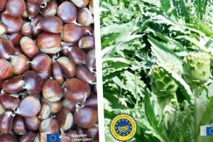 Talijanski marun i grčka artičoka dobili oznaku PGI