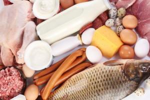 Prvi puta možemo izvoziti hranu životinjskog porijekla u Kinu