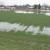 Smena kiše i sunca u Vojvodini, oporavila pšenicu