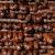 Turija: Majstori kobasice obaraju lični rekord