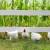 Vojčehovski: EU treba više da radi na raznolikosti poljoprivredne proizvodnje