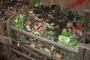 I otpad iz vrta treba ekološki zbrinuti