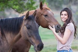 Konj kao ljubimac - skupa hrana za dušu
