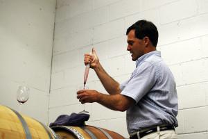 Kako se boriti protiv bolesti koje napadaju vino?