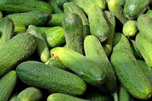 Kornišon: U USK duplo manji urod, a potražnja u EU ogromna