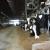 Kako sastaviti izbalansiran obrok za krave?