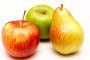 Bolesti plodova jabuke i kruške u skladištima