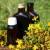 Kantarionovo ili ulje gospine trave pravi se jednostavno, a dobrobiti su brojne