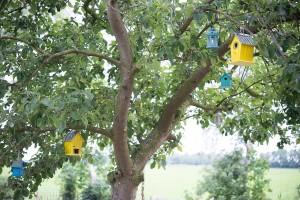 Biološke metode za borbu protiv štetnih organizama