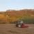 Zbog smanjenja stočnog fonda, manje će se sijati kukuruz - šansa za soju i suncokret